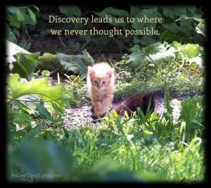 Discover New Worlds